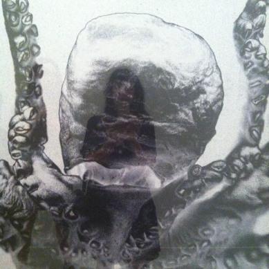 Selfie with Gavin Hipkins' 'Romance: Vienna (Octopus) #artlife #aucklandartgallery #nzphotographer